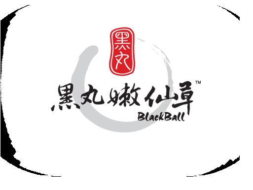 Blackball Singapore – Taiwanese Dessert Secrets